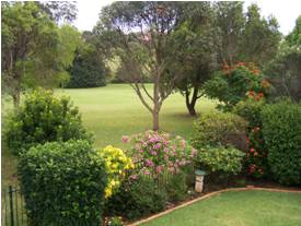 port macquarie counselling overlooks a relaxing garden setting